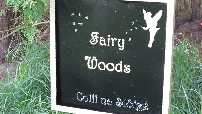 Fairy Woods Castleconnell, Co. Limerick