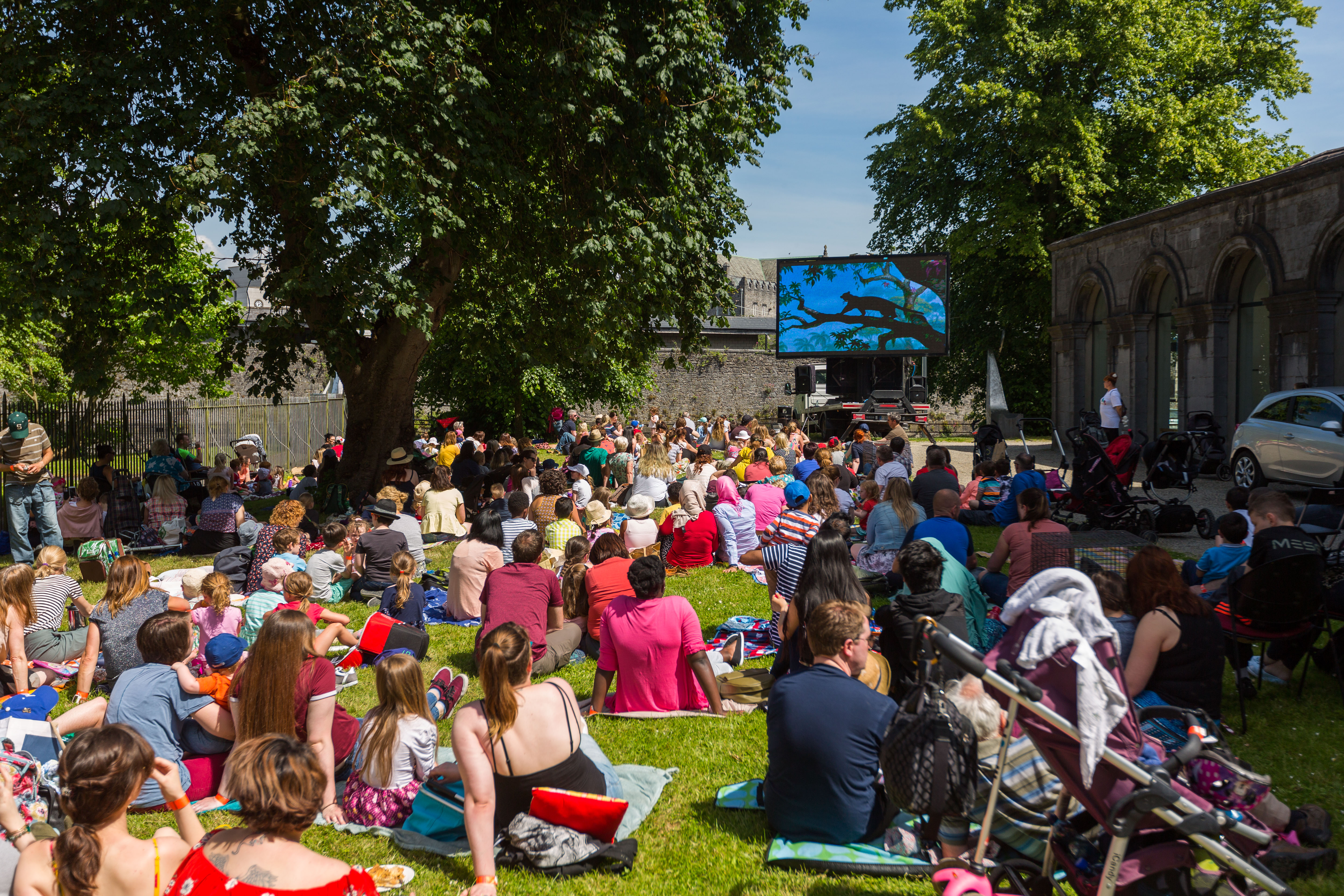 Cruinniú na nÓg - Outdoor Movie at the Hunt Museum