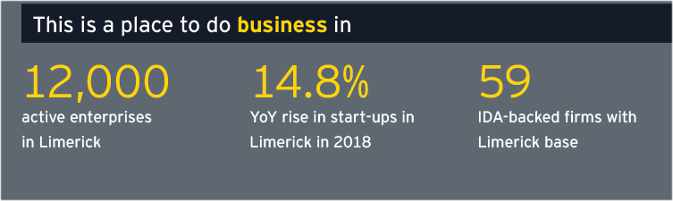 Limerick Economic Monitor - This is a place to do business in