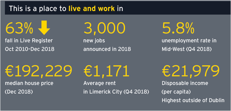 Limerick Economic Monitor - This is a place to live and work in