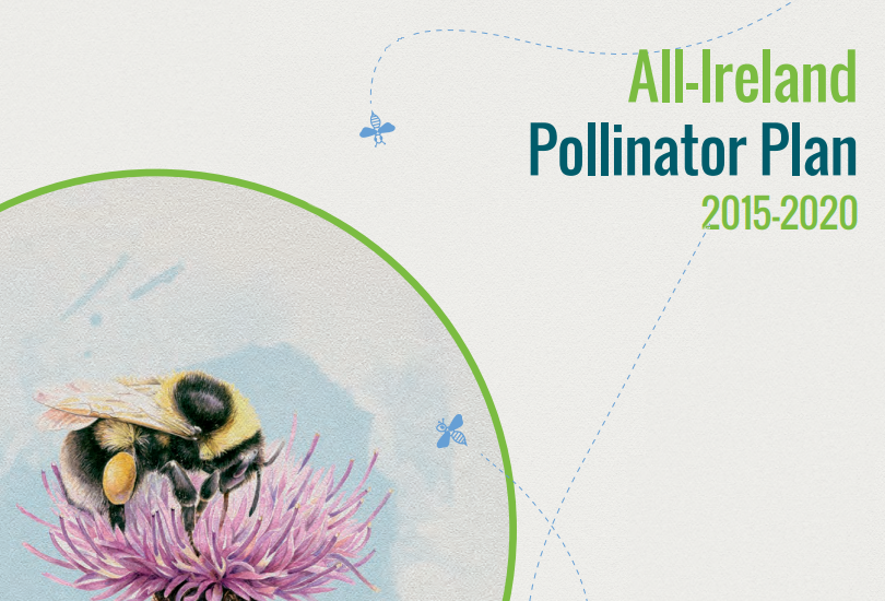 All Ireland Pollinator Plan