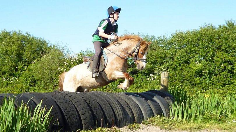 Mary Leonards Riding School 810 x 456