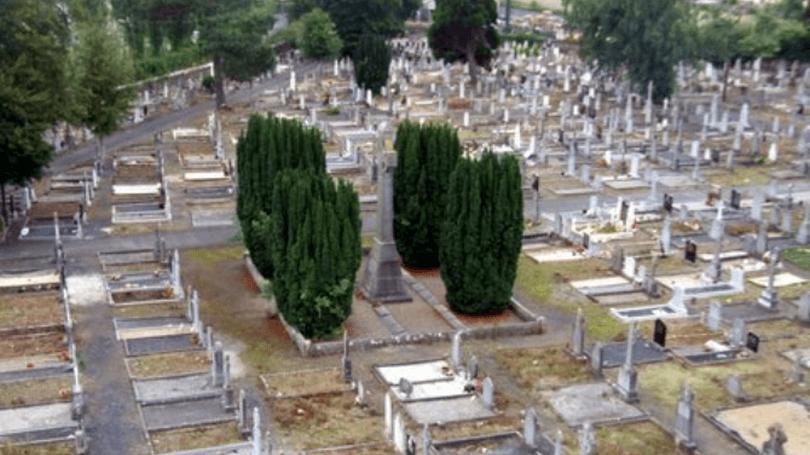 Mount Saint Lawrence Cemetery Tour 810x456