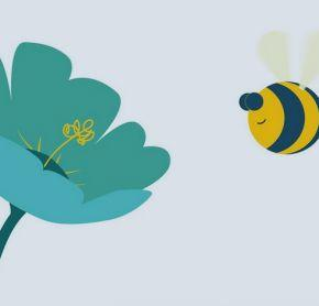 Bee Friendly - Our Council Our Stories