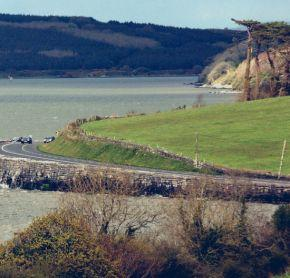 Foynes - Nature and wildlife Coast Road