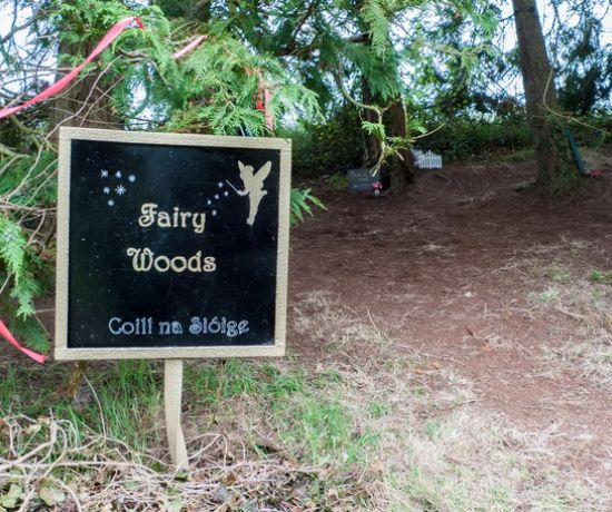 Fairy Woods Castleconnell 810x456
