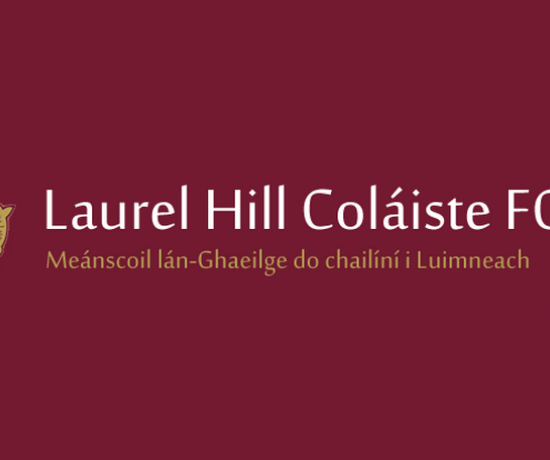 Laurel Hill Coláiste Fcj 810 x 456
