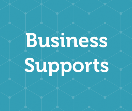 Business Supports