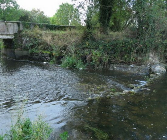 Camoge River (Game Angling) 810 x 456