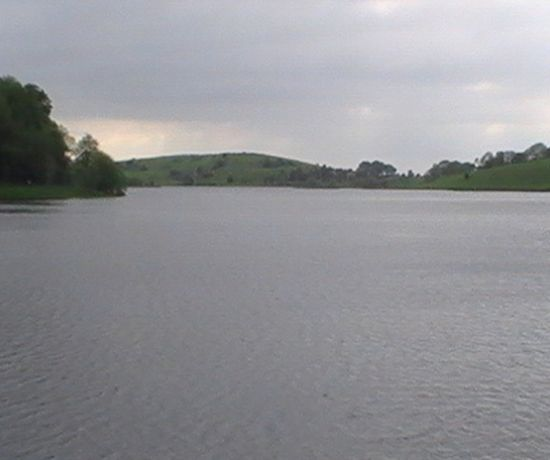 Lough Gur (Coarse Angling) 810 x 456