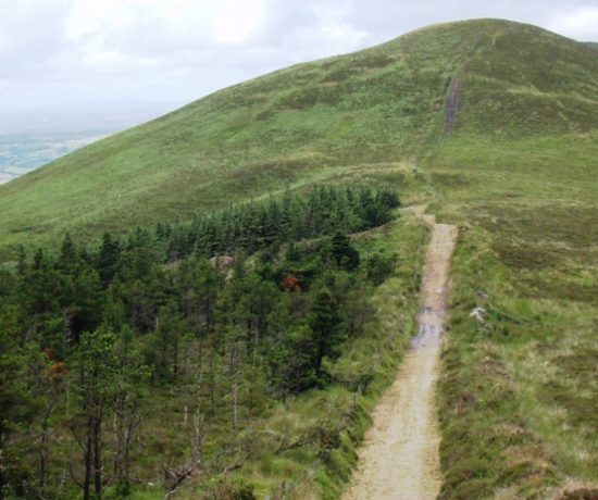 The Slieve Felim Way 810 x 456