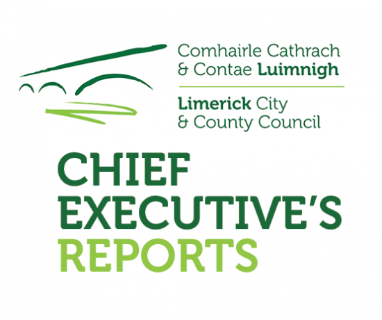 Chief Executive's Reports