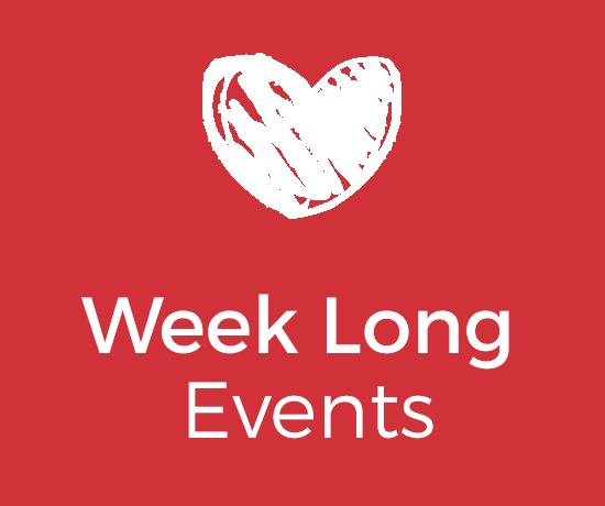 Image result for Limerick Lifelong Learning Festival