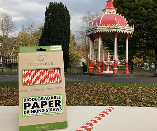 EcoStraws products in the People's Park, Limerick
