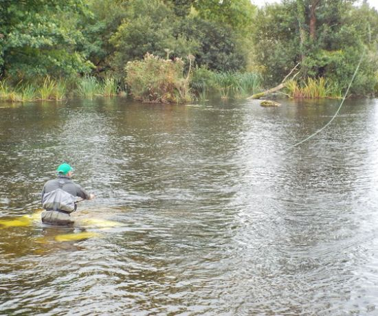 Fly fishing in Castleconnell