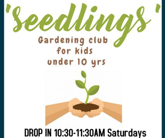 Seedlings Garden Club