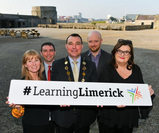 Learning Limerick Seminar