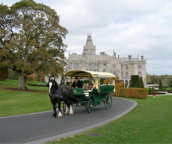 Christmas Carriage Tour