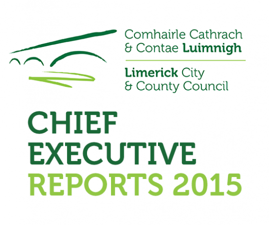 Chief Executive Reports 2015