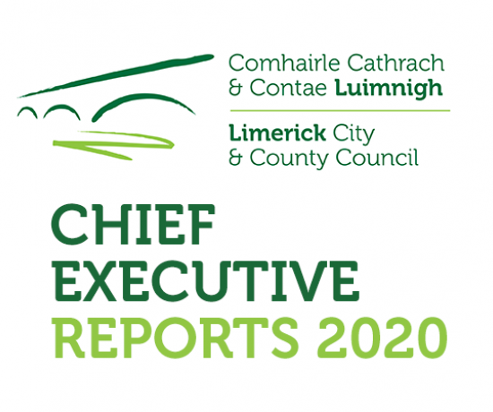 Chief Executive Reports 2020