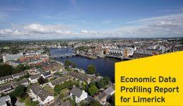 Economic Profiling Report for Limerick City and County