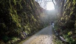 Taoiseach visits Barna Tunnel - Great Southern Greenway Limerick. Pic Marie Keating 810x456