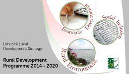 Limerick Local Development Strategy