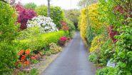 Knockpatrick Gardens-entrance 810x456